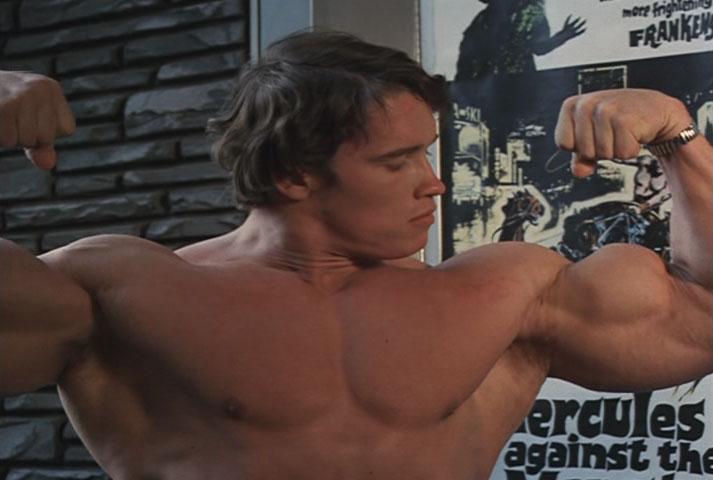 muscles-sch