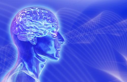 blue_brain