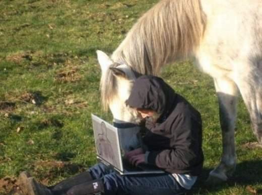 laptops_everywhere_6