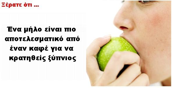 did_you_know_milo_kafe
