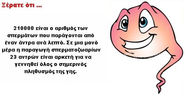 sperma_spermatozoaria_paragogi